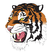 Rock Springs High School logo