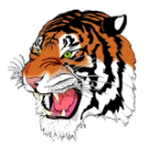 ROWVA High School logo
