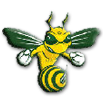 Aiken High School logo