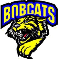 Somonauk High School logo