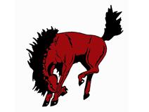 Sonora High School logo