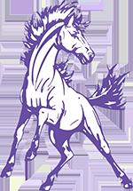 Spring Hill High School  logo
