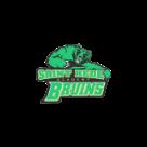 St. Bede Academy logo