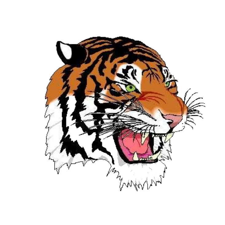 Strasburg-Franklin High School logo