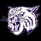 Thornton Township High School logo