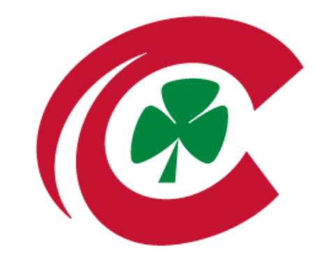 Toledo Central Catholic logo