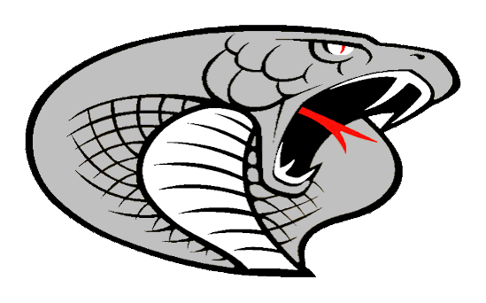 Triton Senior High School logo