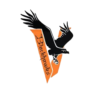 Viroqua High School logo