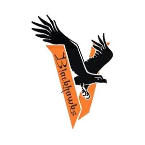 Viroqua High School logo