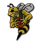 Enosburg Falls Jr-Sr High School logo