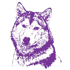 Wahpeton High School logo